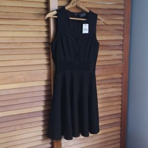 NWT! ASTR Skater Style Dress with Lace Panels